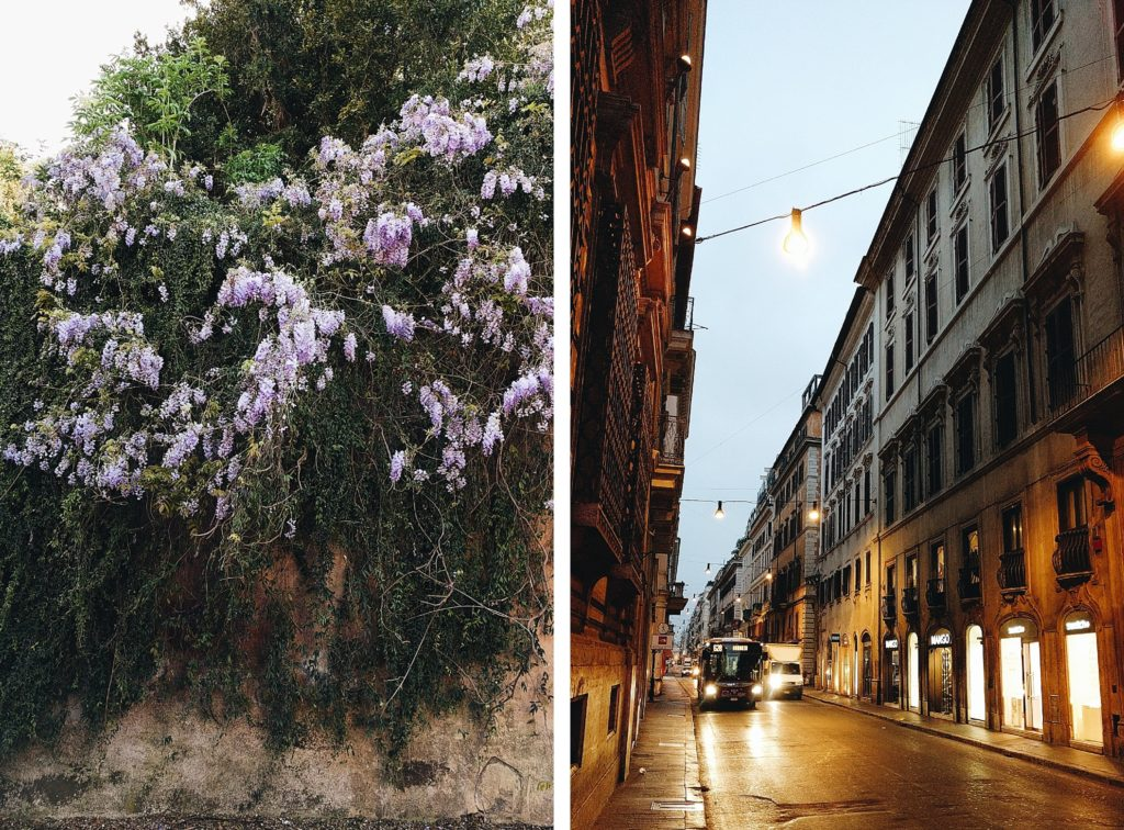 Lilacs and Italian street at dawn